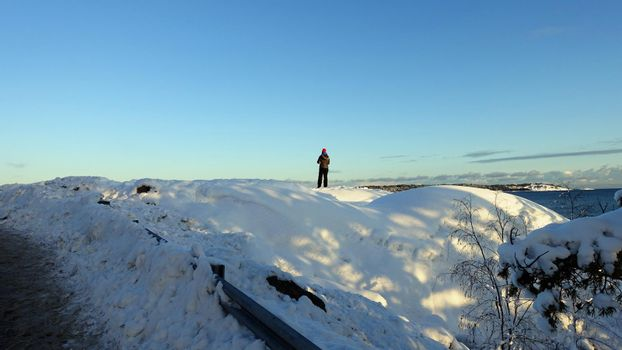 A person admires the landscape on a winter morning in Scandinavia