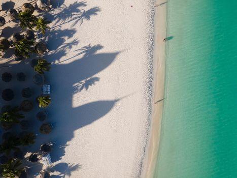 Palm Beach Aruba Caribbean, white long sandy beach with palm trees at Aruba Antilles