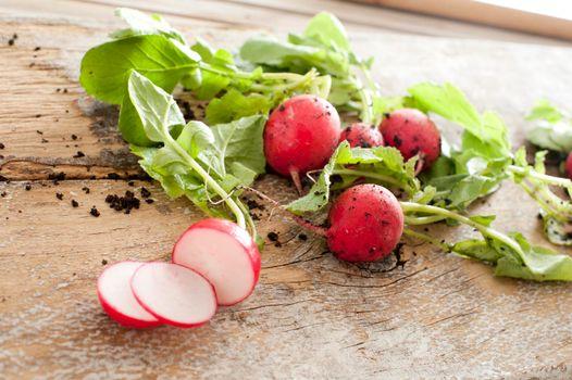 Slicing radishes for salad ingredients