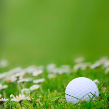 Golf ball on green grass of course close-up view
