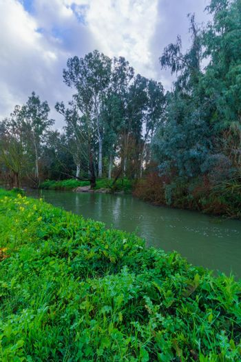 Dan stream, a source of the Jordan River
