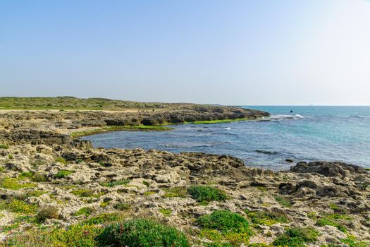 Beach, coves and sandstone cliffs in HaBonim Beach Nature Reserve