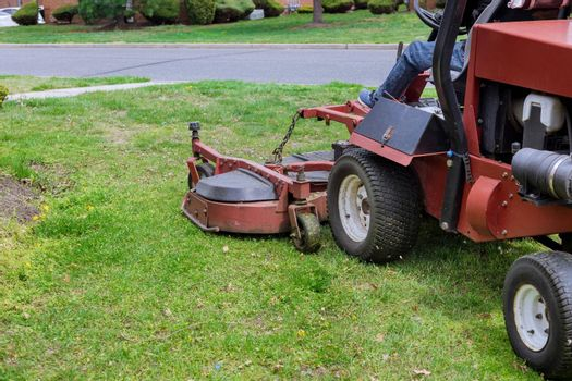 Gardening activity, lawn mower cutting the grass driven lawn mower in sunny garden