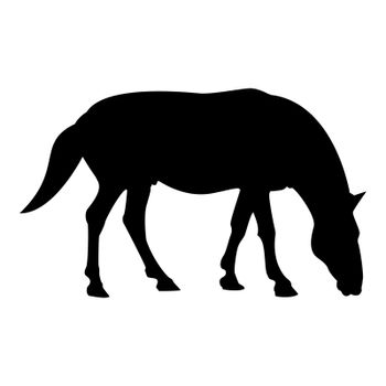 Silhouette steed horse equestrian equine stallion thoroughbred mustang black color vector illustration flat style image