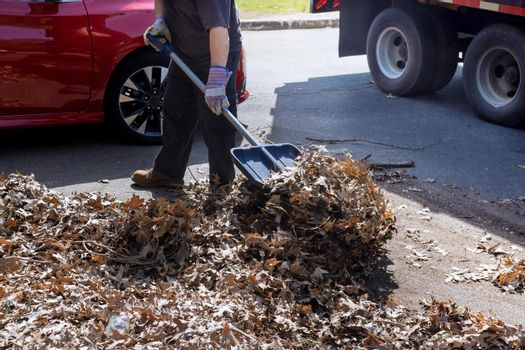 Seasonal work on improving the public places cleans the sidewalk of the city from fallen leaves with during autumn time