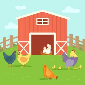 Cute hens with chickens walking on farm yard