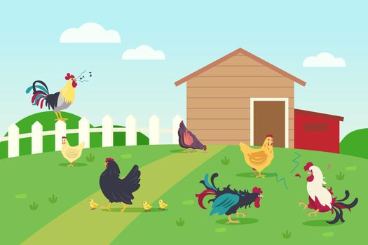 Live of hens and roosters in countryside
