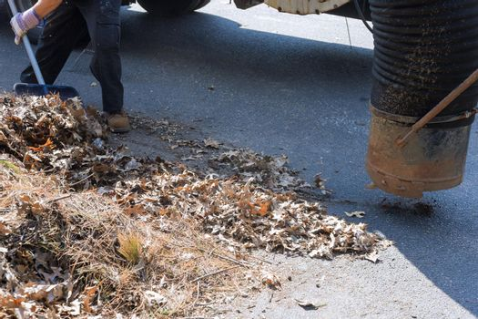 Park cleaning service, man using vacuum for cleaning leaf of the road autumn season
