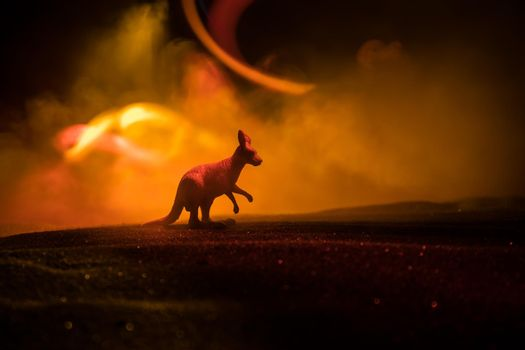 Silhouette of a Kangaroo miniature standing at foggy night. Creative table decoration with colorful backlight with fog. Selective focus