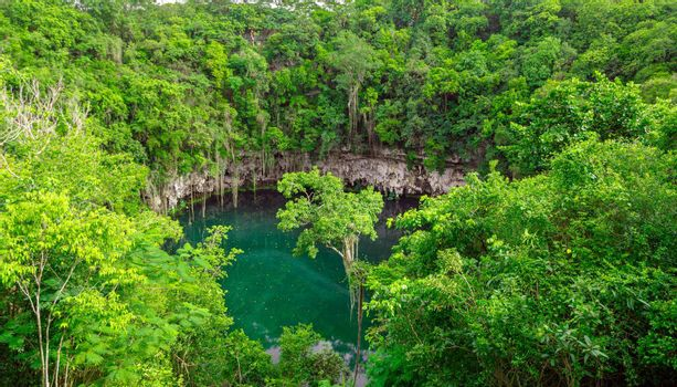 A small lake in a public park surrounded by tall green trees. Top view of the Dominican Republic.