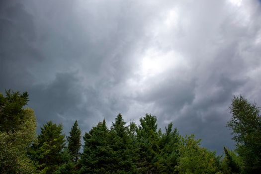 dark ominous storm clouds above trees