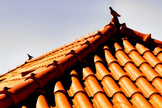 Roof in Azenhas do Mar house with beautiful ceramic pigeon on top