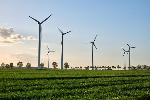 Wind turbines in a grain field with back light