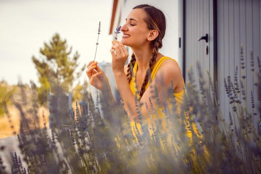 Woman enjoying the scent of Lavender on a farm