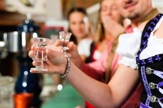 Clinking glasses with hard liquor