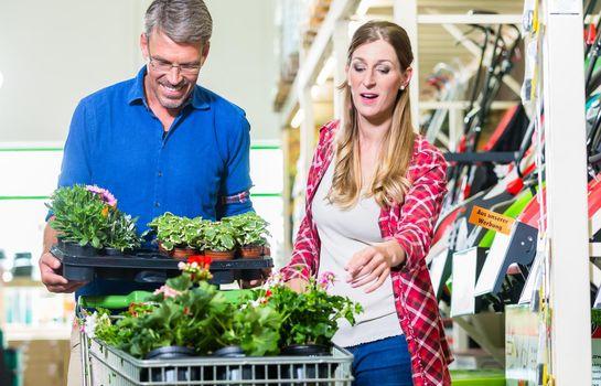 Clerk attending customer in garden center