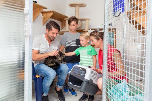 Family adopting cat from animal shelter