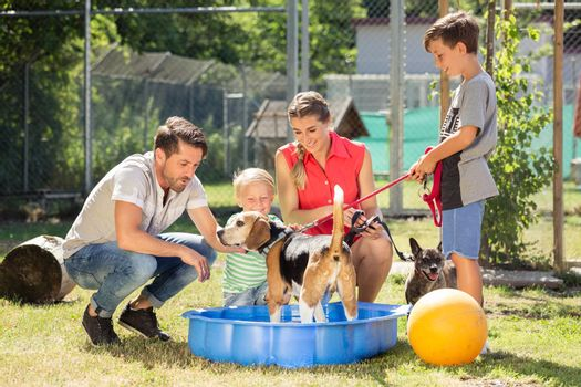 Family playing with dog from animal shelter