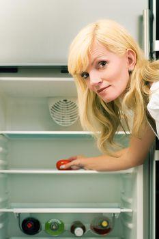 Single fridge