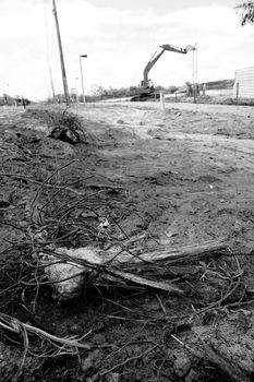 deforestation for condominium construction