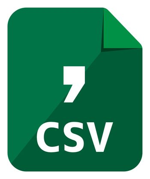 CSV icon   Major file format vector icon illustration  ( color version )