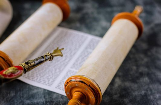 Reading a Torah scroll during a bar mitzvah ceremony with a traditional yad pointing towards the text on the parchment.
