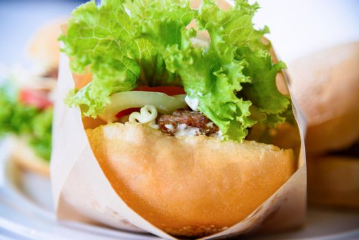 Burger is delicious American fast food