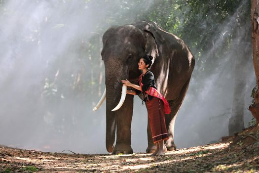 Beautiful young Asian woman dressed in traditional native dress and elephant in forest of village Surin Thailand