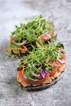 Vegetarian toast with microgreen