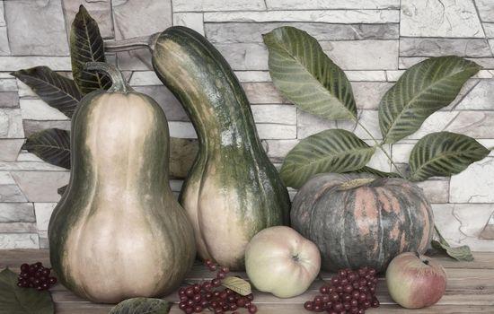 Autumn still life: pumpkins, apples, viburnum berries