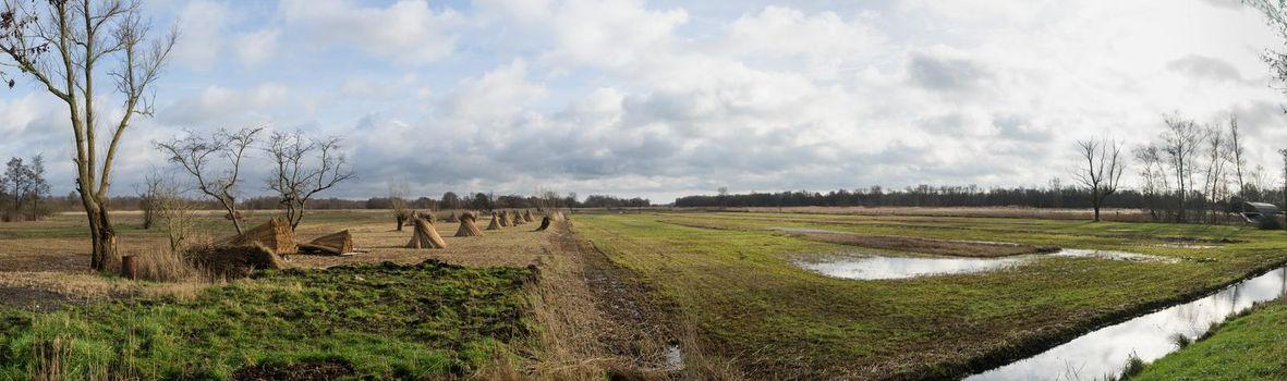 Panorama of grasslands near Dwarsgracht Giethoorn The Netherlands