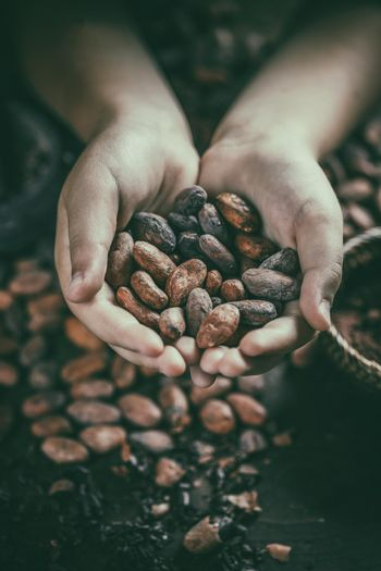 Aromatic cocoa beans