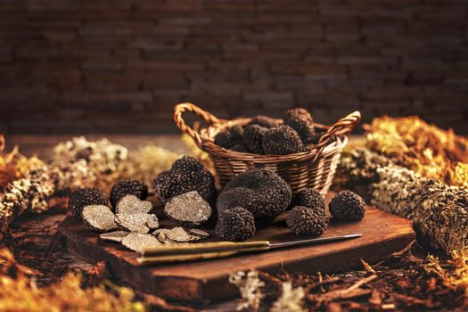 Expensive black truffle mushrooms