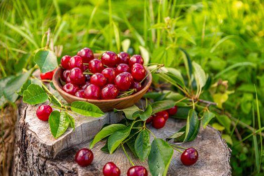 Pile of ripe cherries