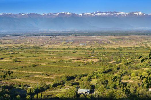 View of Alazani valley, Kakheti, Georgia