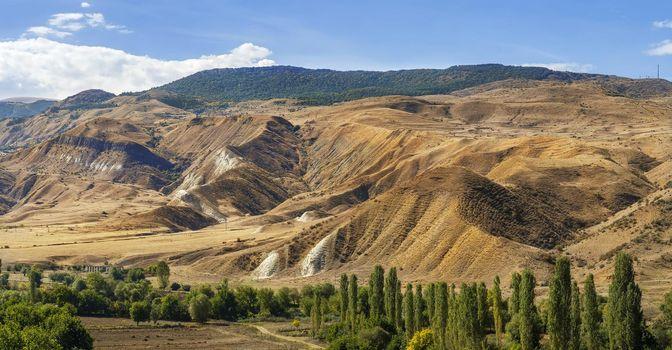 Landscape in southern Georgia