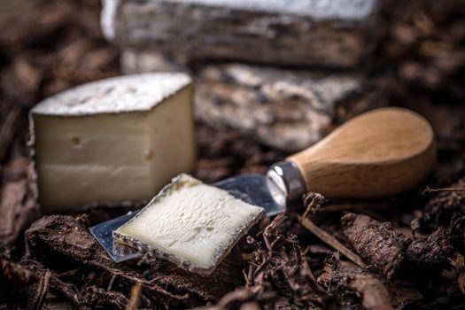 Soft cheese slice