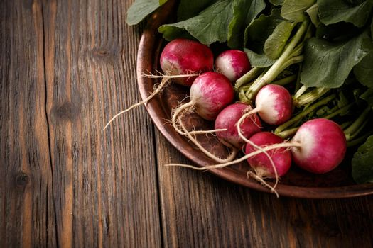 Radishes with leaves