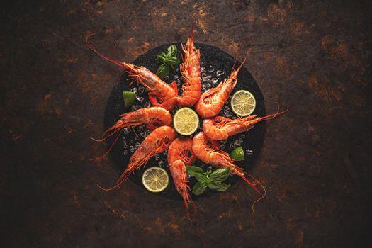 Sea food concept