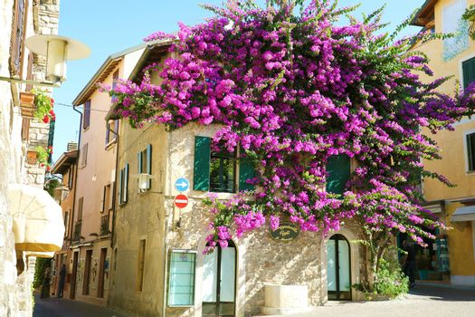 SIRMIONE, ITALY - JUNE 19, 2020: house full of flowers