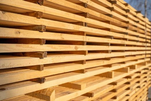 Storage of piles of wooden boards on the sawmill. Boards are stacked in a carpentry shop. Sawing drying and marketing of wood. Pine lumber for furniture production, construction. Lumber Industry.