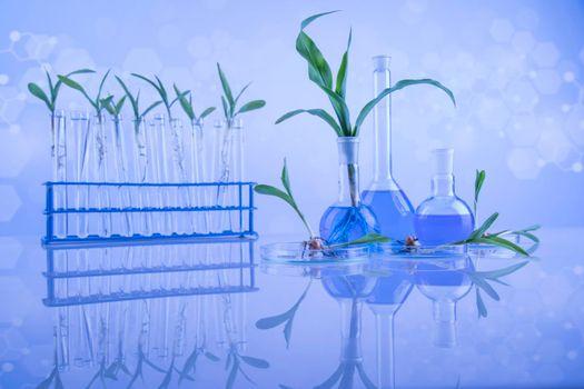 Biotechnology, Chemical laboratory glassware