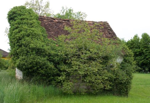 decay and structural damage in building, abandoned house in rural area
