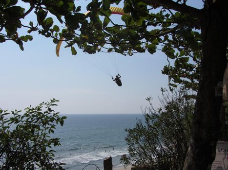 palm trees and beach, holidays and vacation in Kerala, India