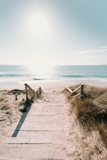 A wooden path to the beach with a sunny horizon with copy space during a bright day with copy space