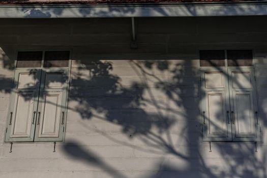 Bangkok, Thailand - Dec 9, 2019 : A tree shadow is shining on the two wood vintage window on the old wall, Ancient thai house.