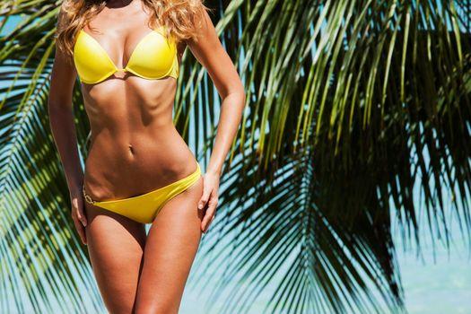 Woman in bikini and palm trees