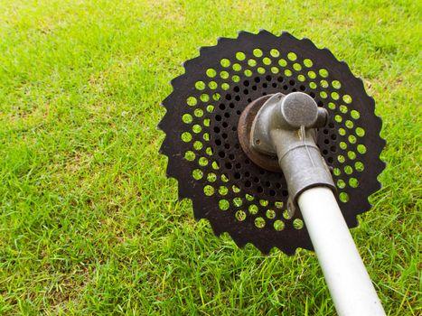Circular saw blade of grass cutter