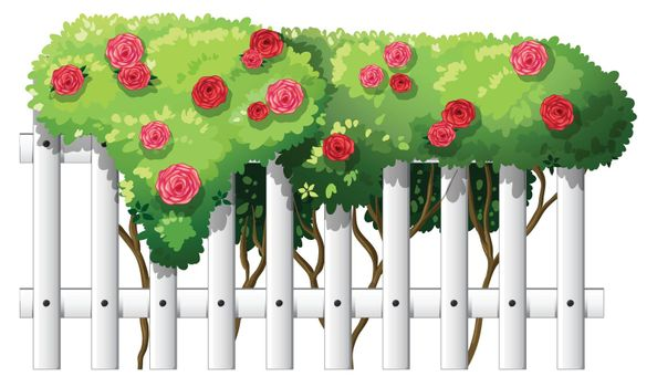 A white wooden fence with flowering plants