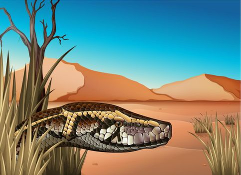 A desert with a reptile